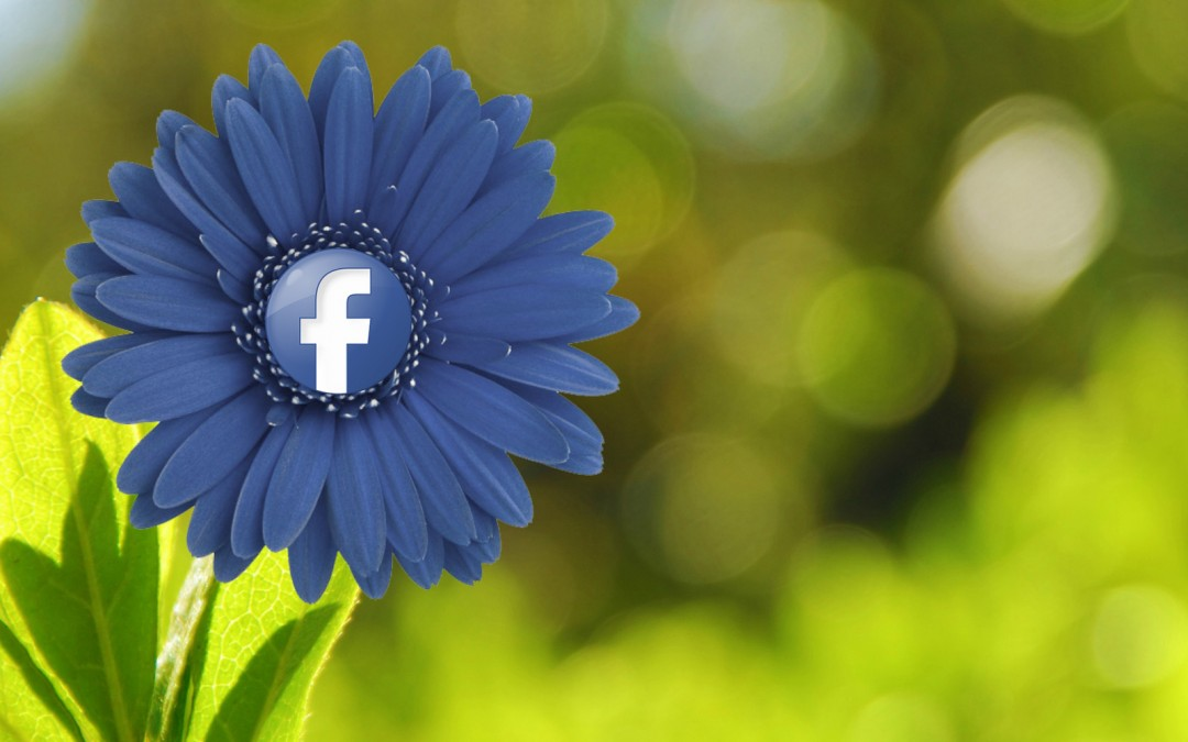 FaceBook Clicks Away at the Echo Chamber